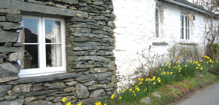 Cottage and daffodils in Little Langdale copyright Helen Reynolds
