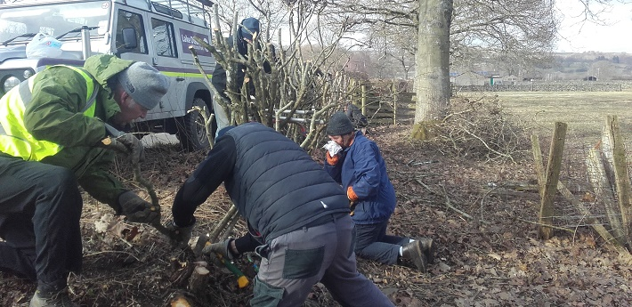 National Park Rangers maintaining hedge in Ullswater
