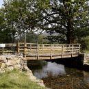 Dubbs Bridge
