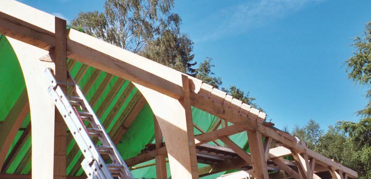 Oak beams at the Footprint Centre copyright Paula Allen