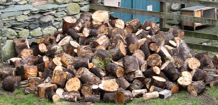 Pile of logs copyright Helen Reynolds