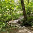 Path restoration