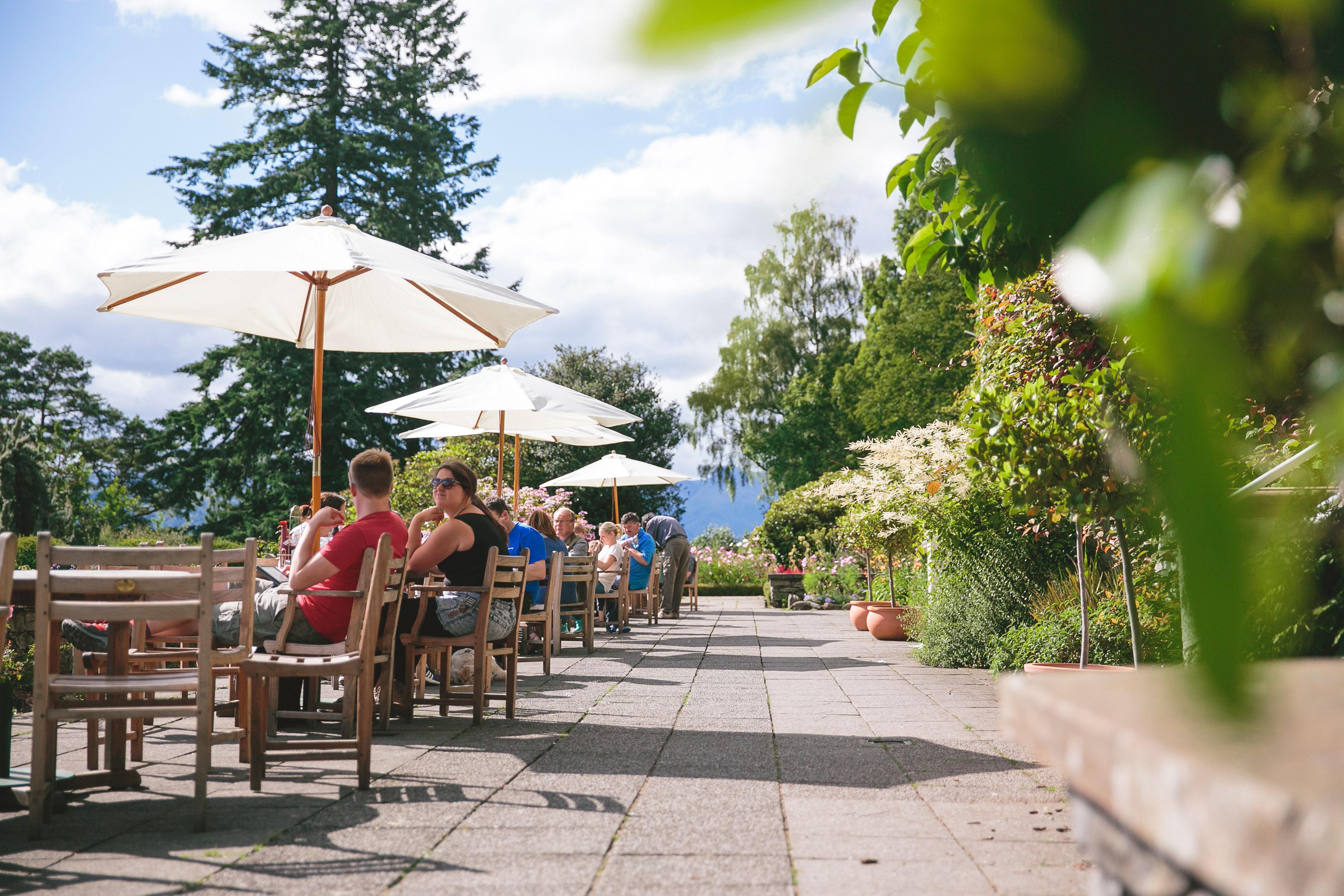 Cafe terrace amongst a summer garden