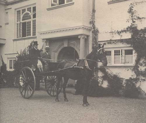 Horse and Carriage outside Brockhole