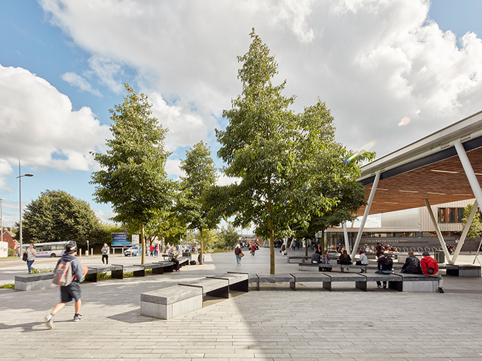 Trees and seating in a pedestrian city area.