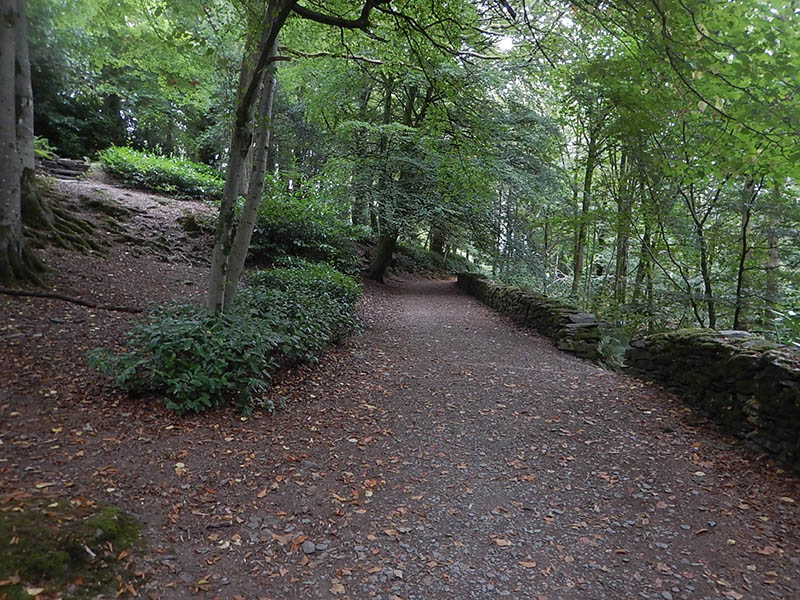 The path climbs further through the woods.
