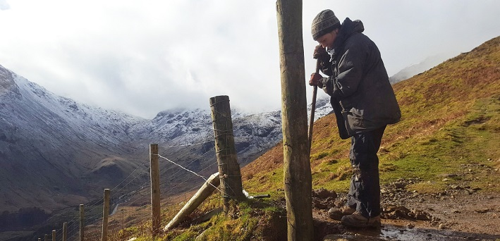 Ranger working in the Lake District