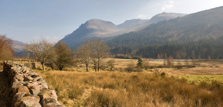 View of Ennerdale and its forests copyright Charlie Hedley