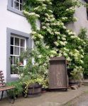 Cottage in Hesket Newmarket © Michael Turner  <a href='https://www.eryri-npa.gov.uk/archived/misc/study-centre-old/professional-training/professional-booking-form-folder/booking-form625'>Large image</a>