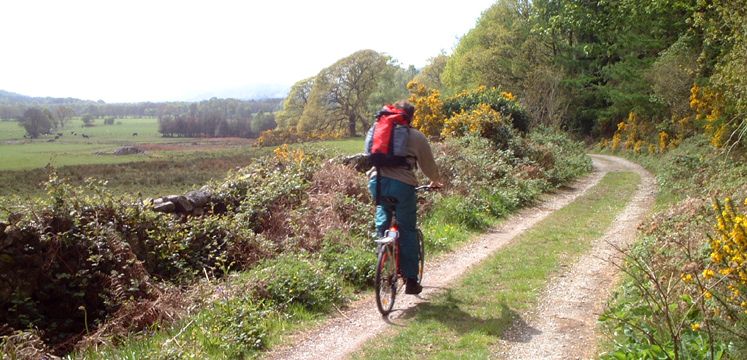 Cyclist on Eskdale TRail at High Eskholme