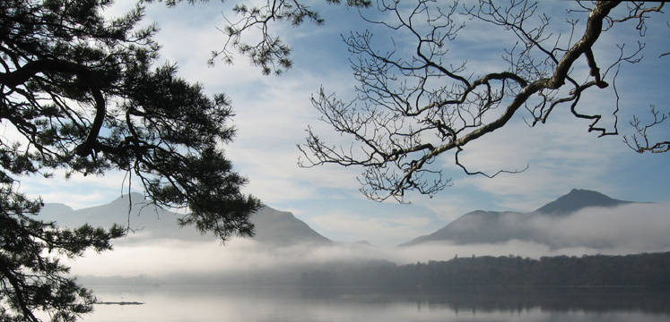Catbells above Derwentwater through trees and mist copyright Helen Reynolds