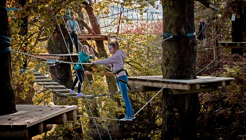 Teenagers on a high rope adventure course in the tree tops
