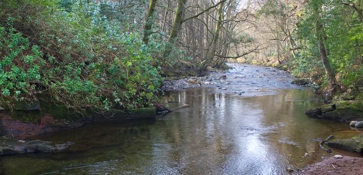 River Calder copyright Charlie Hedley