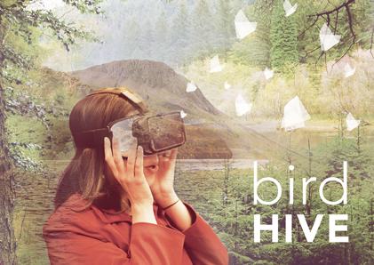 Bird Hive