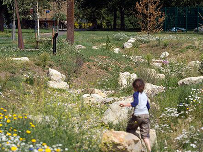 A child running through small bolders and meadow plants and flowers.
