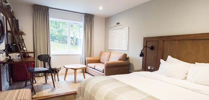 A beautiful, modern room at the North Lakes Hotel and Spa