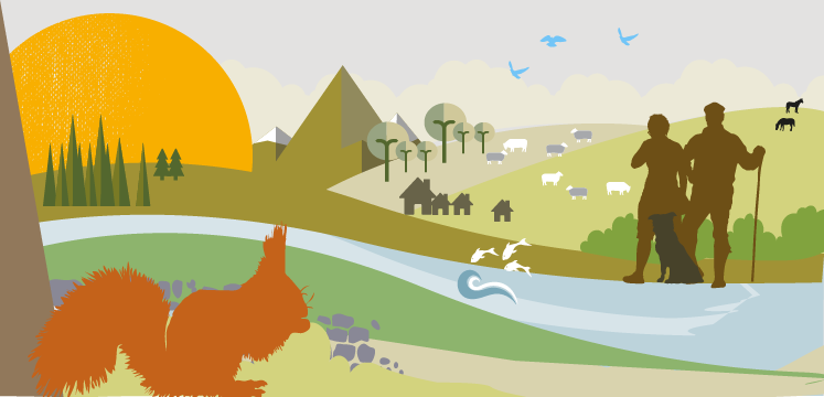 Illustration for farming and forestry nature recovery