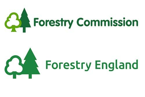 Forestry Commission and Forestry England
