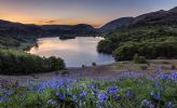 Grasmere at sunset with bluebells / Harry Johnson Photography @harryfoto_