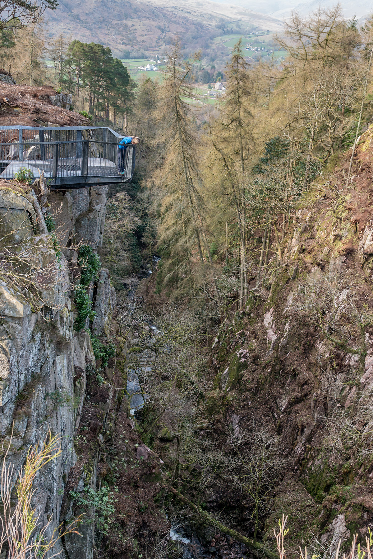 Someone standing on a metalwork platform that juts out over a steep sided ghyll.