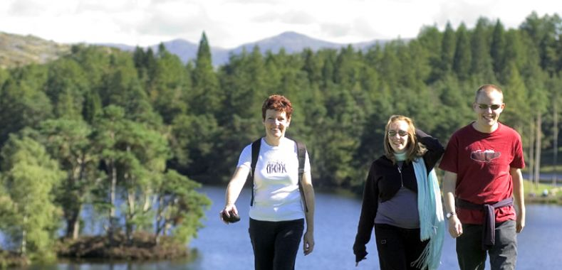 Walkers at Tarn Hows copyright Charlie Hedley