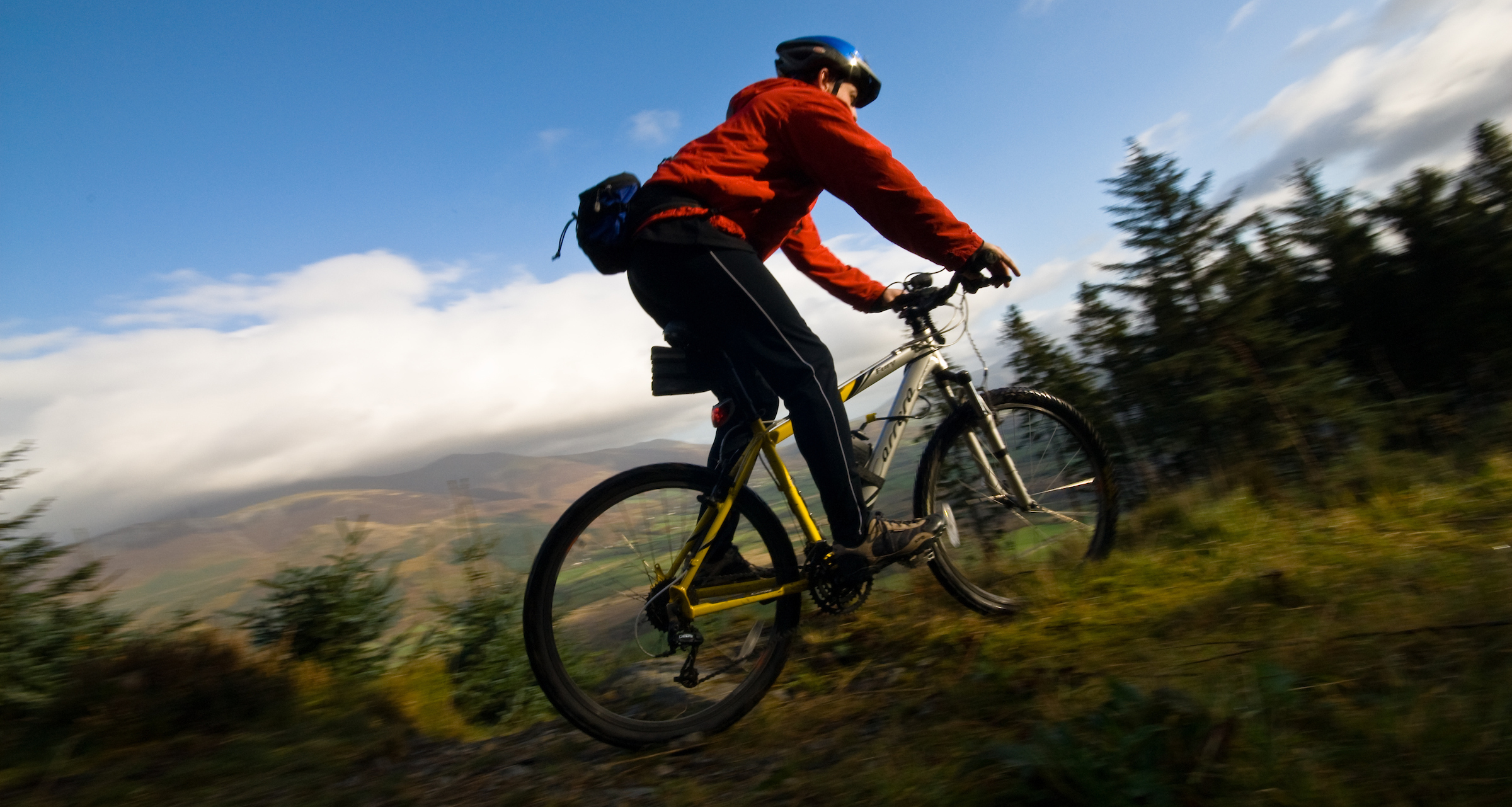 Cyclist at Whinlatter Forest - Dave Willis / Cumbria Tourism