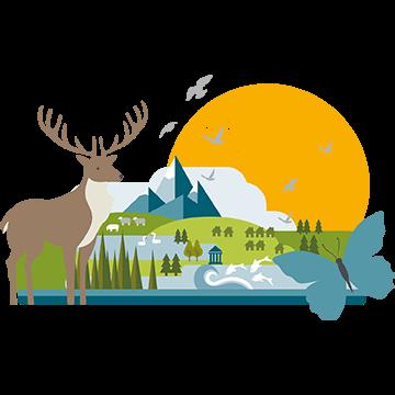 Biodiversity in the Lake District