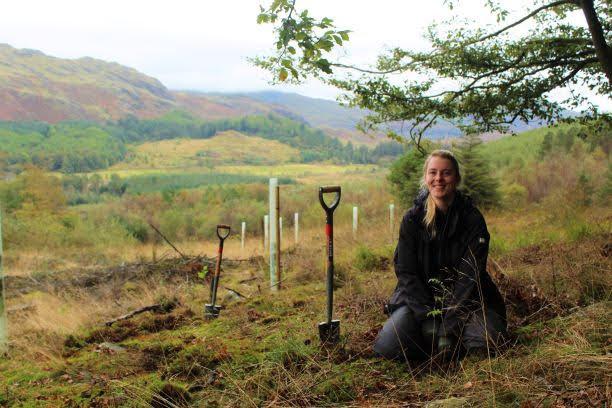 Tree planting in Hardknott Forest - John Hodgson