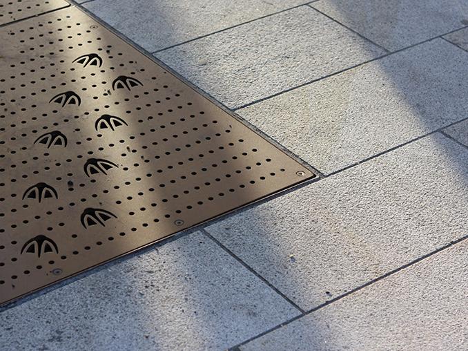 Bird footprints on a city street.